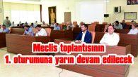 MECLİS TOPLANTISININ 1. OTURUMUNA YARIN DEVAM EDİLECEK