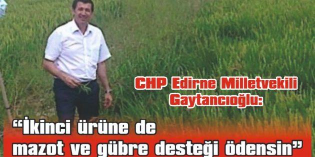 """GAYTANCIOĞLU: """"İKİNCİ ÜRÜNE DE MAZOT VE GÜBRE DESTEĞİ ÖDENSİN"""""""