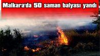 MALKARA'DA 50 SAMAN BALYASI YANDI