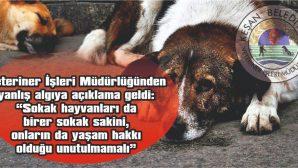 """""""YASA GEREĞİ, KISIRLAŞTIKTAN SONRA AYNI NOKTAYA BIRAKILIYOR"""""""