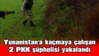 YUNANİSTAN'A KAÇMAYA ÇALIŞAN 2 PKK ŞÜPHELİSİ YAKALANDI