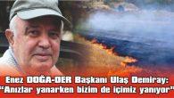 """DEMİRAY: """"ÇARE YOKSA ÇELTİK EKİMİ YASAKLANSIN"""""""