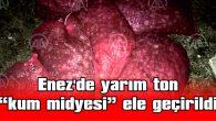 """ENEZ'DE YARIM TON """"KUM MİDYESİ"""" ELE GEÇİRİLDİ"""