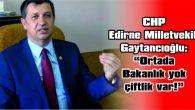 """GAYTANCIOĞLU: """"ORTADA BAKANLIK YOK ÇİFTLİK VAR!"""""""