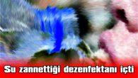 SU ZANNETTİĞİ DEZENFEKTANI İÇTİ