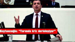 """GAYTANCIOĞLU: """"TARIMDA KRİZ DERİNLEŞİYOR"""""""