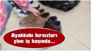 HIRSIZLAR, YENİ MAHALLE'YE DADANDI