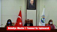 BELEDİYE MECLİSİ 1 TEMMUZ'DA TOPLANACAK