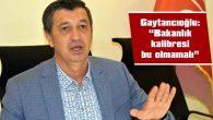 """GAYTANCIOĞLU: """"EDİRNEMİZE BOŞLUĞA BAKAN GELMİŞ"""""""