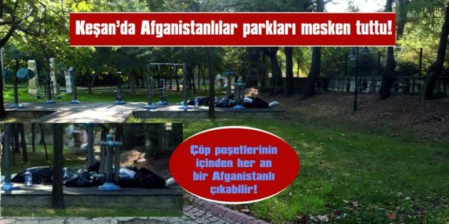 KOLLUK KUVVETLERİ DE Mİ UYUYOR!..